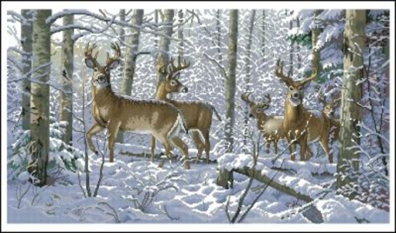 35130-DMS Зима в лесу
